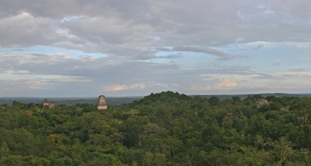 Tikal: From Temple IV