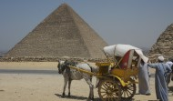 Carriages at the Pyramids 1