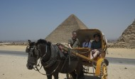 Carriages at the Pyramids 3