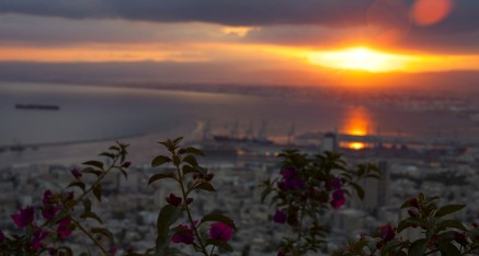 Haifa Sunrise Flowers hdr